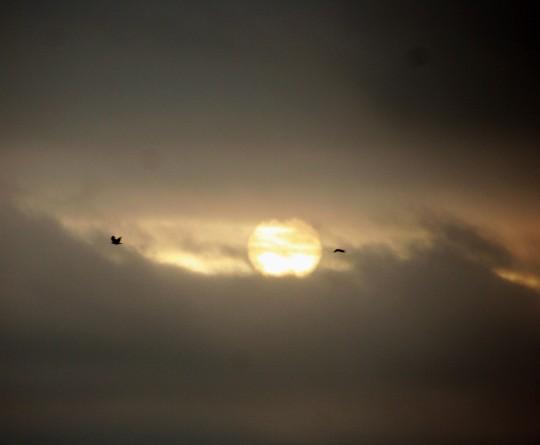 Sunsetgoodbye_7187