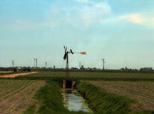 Irrigation_1185