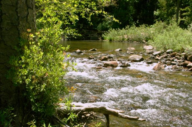 WEntrance river2185