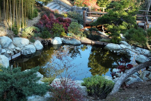 ReflectJapaneseGarden_0108