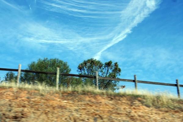 SkyDesign&Fence_2975