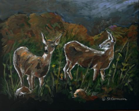 DeerScratchProc_3138
