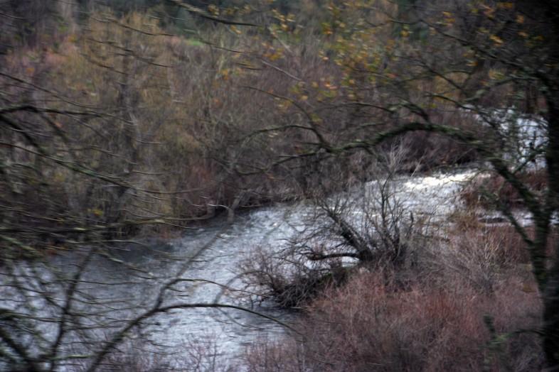 riverbend_3326