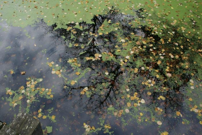 water around Frelembourgsmall