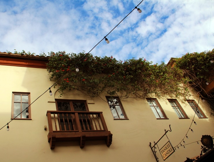 BalconydoorSantaBarb_4311