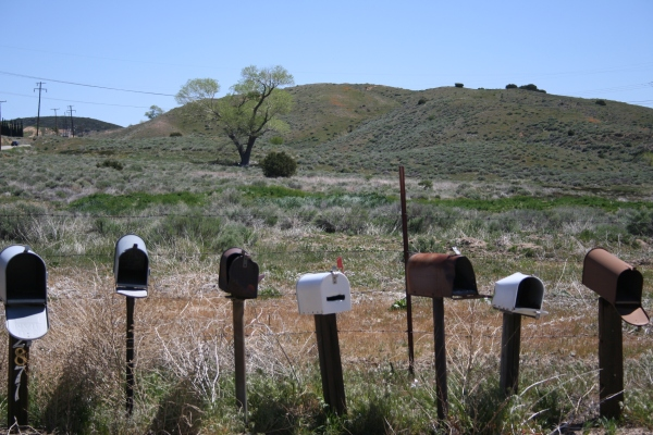 Mail Boxes 113