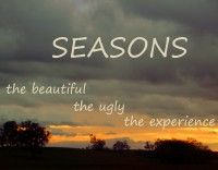SEASONS  - you can do your own thing. Or follow my variant.