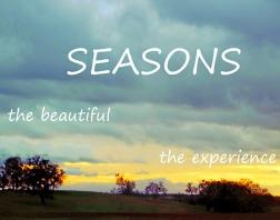 SeasonsSmall2WidgeBlueYelSunset_4269 copy