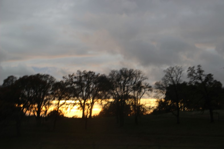 SunsetAtHome_4260