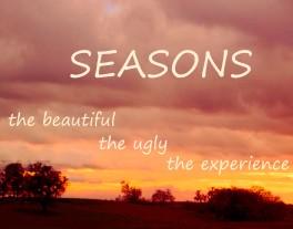 SeasonsSummerFallWidgetBlog2_4269 copy