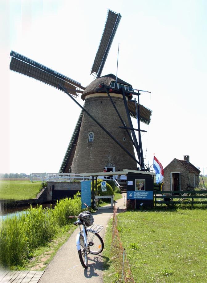 Windmill Kinderdijk0844